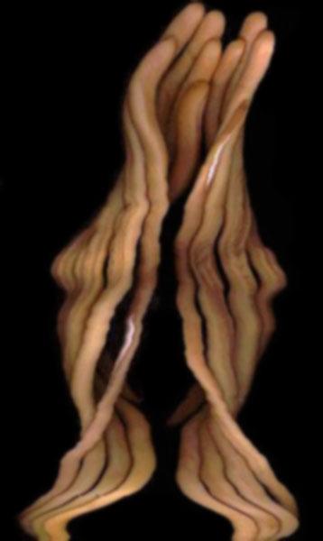 Suloni Abstract Figurative Art